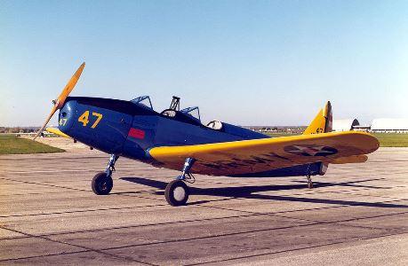 PT-19